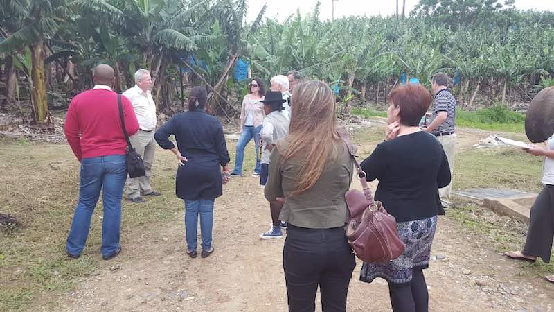 banana tours