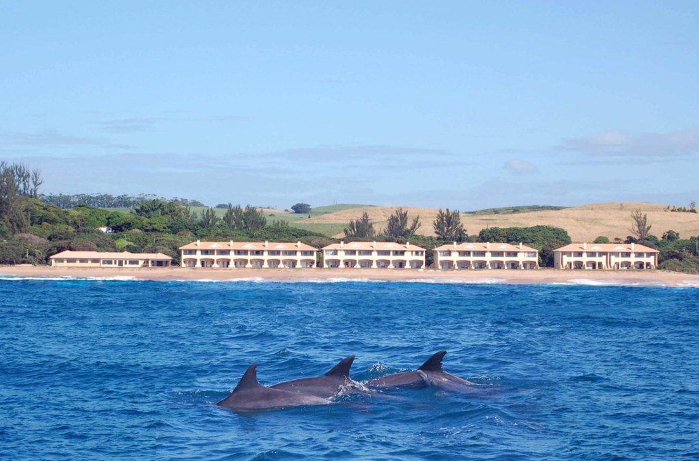 The Happy Wanderers Holiday Resort