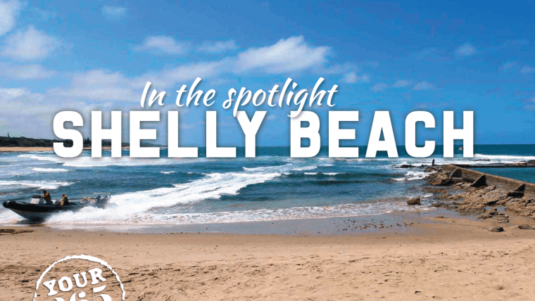 Welcome to Shelly Beach