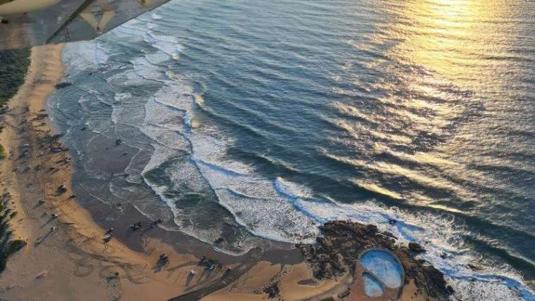 Catch the final action of the annual #SardineRun from the KZN South Coast